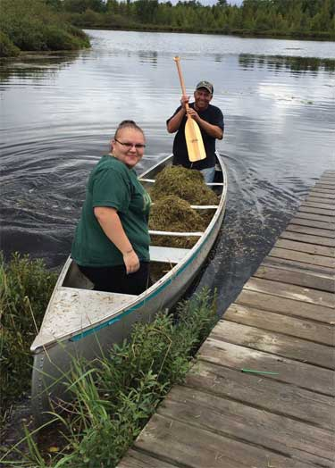 JOLENE DE COTA AND MIKE KRUSENSTERNA PLANT WILD RICE