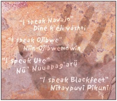 INDIGENOUS LANGUAGES GRAPHIC