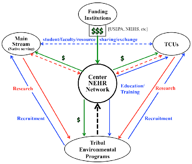 GRAPHIC MODEL OF NEHR NETWORK